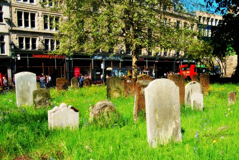 """Cemetary City"" by Mary Pierce from her post Jux Mary blogs"